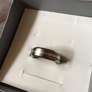 Other - Mens Titanium and Silver Band